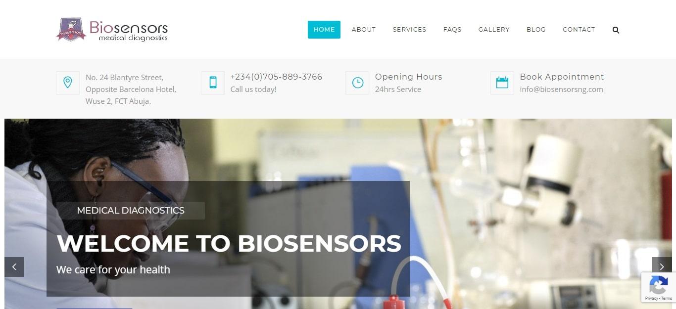 Bisensors website design project
